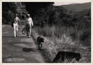 Miguel Delibes paseando con sus perros, Grin y Cóquer. Sedano (Burgos).