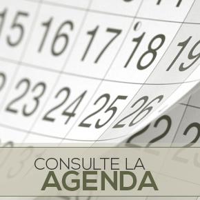 Consulte la Agenda